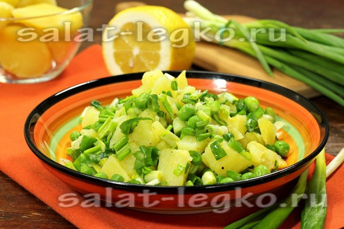 лес лук салат листва
